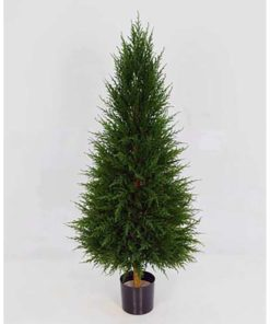"""Cypressus - """"Cone"""""""
