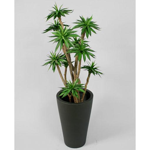 Agave kaktusplante 110 cm