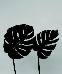 Split Philo blader
